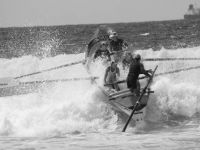 Competition at Maroubra Beach